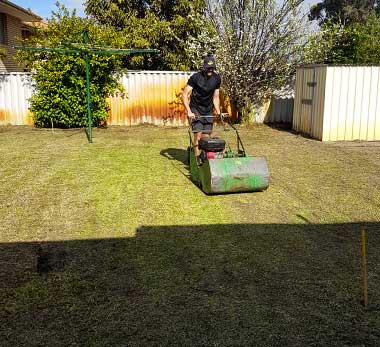 Lawn mowing, edging & hedging