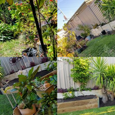 Mows Landscaping Canning Vale1