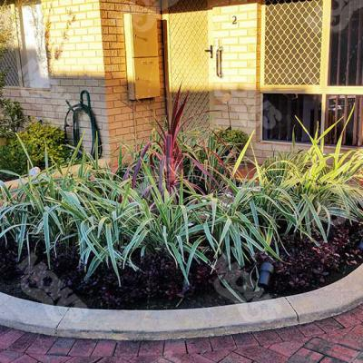 Mows Landscaping Dianella 3