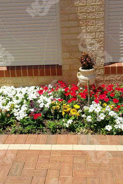 Mows Landscaping Dianella 51