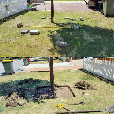 Mows Landscaping Dianella 7