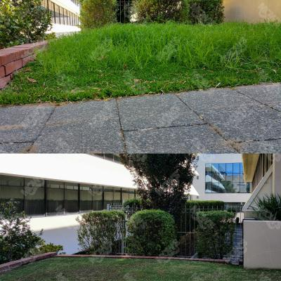 Mowing Edging And Hedging West Perth