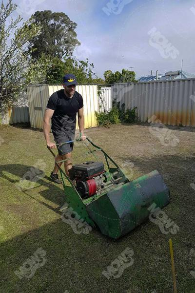 Mows Lawn mowing, edging and hedging Dianella 2