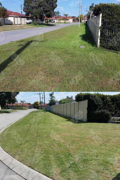 Mows Lawn Mowing Edging And Hedging Midvale 2