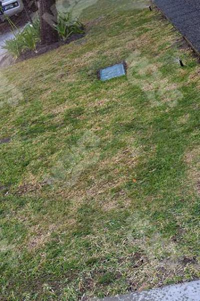 Mows Reticulation And Maintenance West Perth